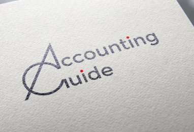 Accounting Guide - пример работы DIDUS.DEV